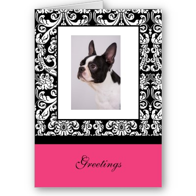 Boston terrier gifts stationery