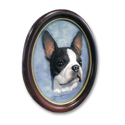Boston Terrier Portrait Oval Picture