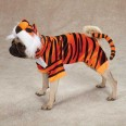 Bengal Tiger Dog Costume
