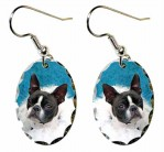 Boston Terrier with Boa Earrings