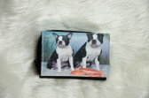 Boston Terriers at the Beach Wallet